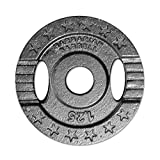 Ironbody Barbarian Barbell Hantelscheibe Guss 30mm, 0,5kg (Made in Germany!)
