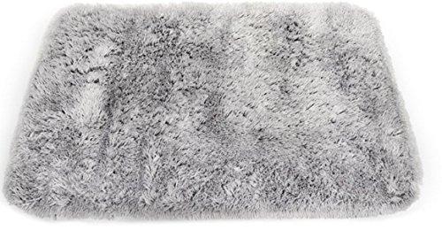 ▷ Hochflor Teppich Reinigen Vergleichstest 01 / 2019 » ✅ NEU