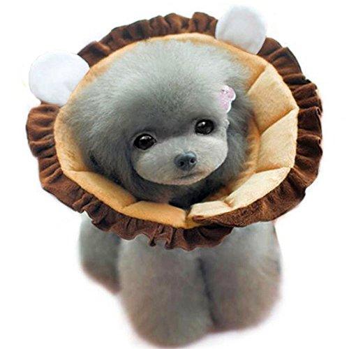 Bolbove Braun Löwe Design Pet Weich & Stylisch Konus Recovery-für Hunde & Katzen, 4#