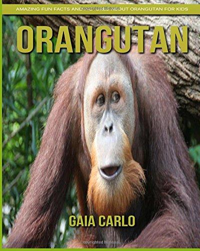 Orangutan: Amazing Fun Facts and Pictures about Orangutan for Kids