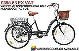Jorvik Erwachsene-Dreirad aus leichtem Aluminium, 26-Zoll (66,04cm) Vintage niederländischer Stil, Herren damen, schwarz
