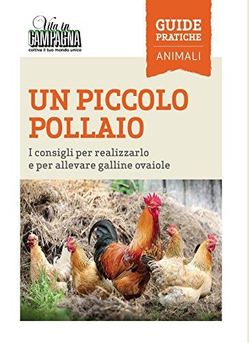 Un piccolo pollaio. i consigli per realizzarlo e per allevare galline ovaiole