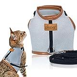 PiuPet Pettorina per Gatti 1,20 m di guinzaglio, Collare di Gatto Sicuro e Robusto, Taglia S |