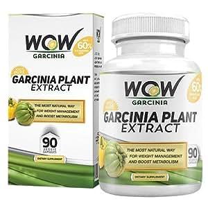 Wow Garcinia Cambogia - 800 mg - 90 Veg Capsules (Pack of 1)
