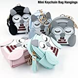 Shopaholic Owl Mini Keychain Bag Hanging Wallet Frames Coin pouch for Coins/Earphones/Multi Purpose