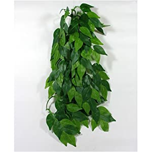Reptile Vivarium Jungle Silk Plant Decor Ficus Large from Reptipet