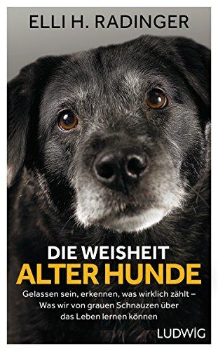 Die Weisheit alter Hunde: Gelassen sein, erkennen, was wirklich zählt - Was wir von grauen Schnauzen über das Leben lernen können -