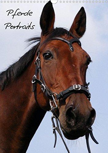 Pferde Portraits  (Posterbuch DIN A3 hoch): Einfach umblättern, es erwarten sie 12 Portraits von Pferden.  Posterbuch, 14 Seiten (CALVENDO Tiere)