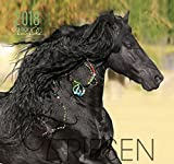 Friese 2018: Friesen Pferde