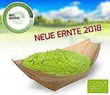 Biosentio - BIO Weizengras-Pulver 1000g (deutscher Anbau)