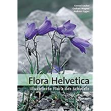 Flora Helvetica - Illustrierte Flora der Schweiz: mit Artbeschreibungen und Verbreitungskarten von 3200 wild wachsenden Farn- und Blütenpflanzen, einschliesslich wichtiger Kulturpflanzen
