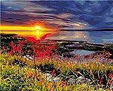 NR Malen nach Zahlen Sonnenuntergang Bild DIY Modernes Ölgemälde Farbe Leinwand Bild Home Decoration Handgemalte Wandkunst 40x50 cm Gerahmt