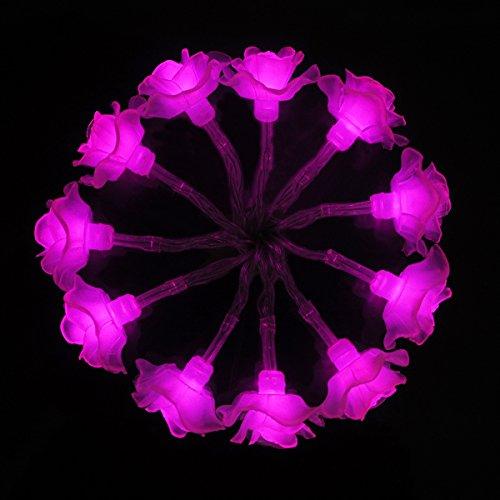 ISIYINER Luci Stringa Alimentazione a Batteria LED Fata Marocchine Luci Della Stringa 2m Con 10 LED forma Rose Per Il Natale Di Nozze Del Festone Del Partit