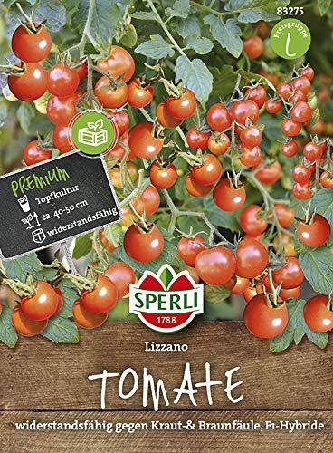 Tomate Lizzano F1 von Sperli-Samen [MHD 01/2020]