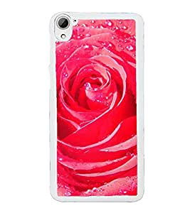 ifasho Designer Back Case Cover for HTC Desire 826 :: HTC Desire 826 Dual Sim (Gloriosa Superba Rose Cutter T Rose Perfume Lily )