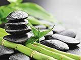 Artland Qualitätsbilder I Glasbilder Deko Glas Bilder 80 x 60 cm Wellness Zen Stein Foto Grün D8QF Wachstum - Lavasteine Bambus