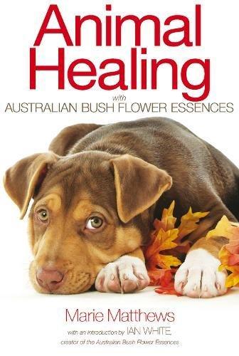 Animal Healing with Australian Bush Flower Essences