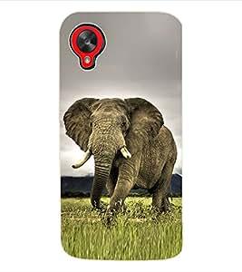 Fuson 3D Printed Elephant Wallpaper Designer Back Case Cover for LG Google Nexus 5 - D833