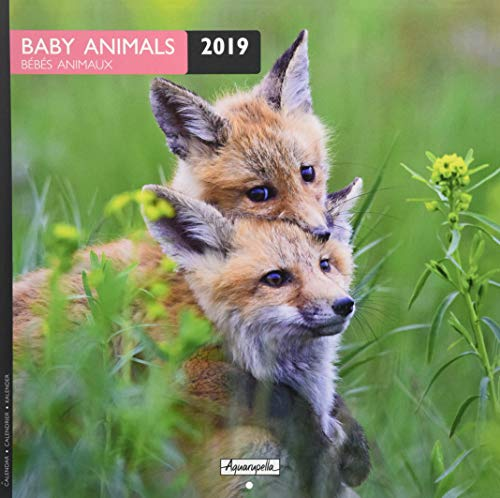 Aquarupella 2019 Baby Animals: Bébés Animaux