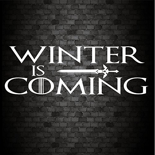 Winter Is Coming Funny coche ventana parachoques juego