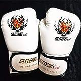 Carriea Boxhandschuhe Training Gloves –Handschuhe Profi - professionelle Qualität - hochwertige Konstruktion - Boxen, Training, Sandsack, Boxsack, Freefight, Grapling, Kampfsport - All-Round