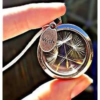 SterlingSilber kette Löwenzahn Medallion Pusteblumen Anhänger Halskette 925 Wunsch -Schwebeanhänger Glas-Medaillon Mit Geschenkbox Geschenk für Freundin