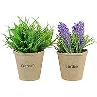 Plantas y Artificiales Flores de Lavanda y Boston Fern en Maceta, Paquete de 2