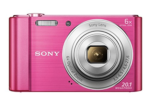Sony Cybershot DSC-W810/P 20.1MP Digital Camera (Pink)