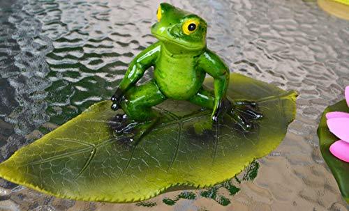 hwimmfrosch Surfer auf großem Blatt für den Teich - stabile Ausführung- wetterfest ()