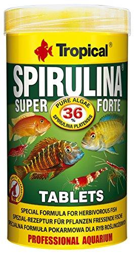 Tropical Super Spiru Tabin A Hafttabletten mit 36{904a9ba1f89ba0f8874dc5270a1cb5efe0fd991b02392d135bc6bd0173726e1a} Spirulina (platensis) Algen, 1er Pack (1 x 250 ml)