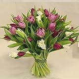 Blumenstrauß geburtstag mit Tulpen- perfekt zum versenken, ein Tulpenstrauß ist super geeignet für das Versenden im Karton- da Tulpen beim Transport nur sehr wenig Wasser brauchen Size 25 Euro