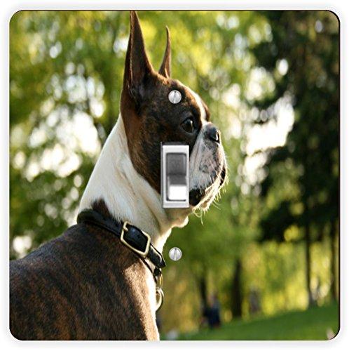Rikki Knight Boston Terrier Dog-Single Toggle Lampe Switch Plate
