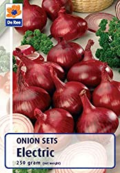 Electric winter Onions (250g Pack) Autumn Planting - Plant Autumn Onwards Produces outstanding quality, shiny, deep red semi-globe-shaped onions with excellent flavoured pink tinged flesh. Ideal for over wintering, plant in autumn-early winter for ha...