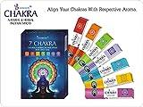 Divine Magick 7Chakra incenso 15GMS-7Confezioni