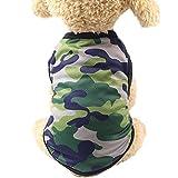 Hmeng Mode Welpen Hund Prinzessin Kleid ❤️Hund Dot Rock Haustier Hund Kleid, Haustier Kleidung Hund Dot Rock Welpen Prinzessin Kleid Schön Erdbeere/Ananas XS/S/M/L/XL/XXL (Grün, M)