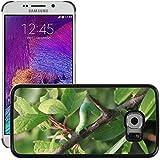 Just carcasa Hot carcasa rígida de estilo teléfono celular PC//m00139190Blade Caterpillar pequeña/Hierba/Samsung Galaxy S6Edge (no para S6)