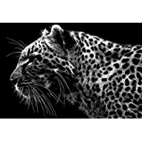 LARGE MODERN LEOPARD CANVAS ART PRINT box canvas 30 x 20 inches ready to hang preiswert