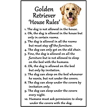 GOLDEN RETRIEVER House Rules for Non Pet Owners Funny Fridge Magnet