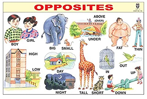 IBD Pre-Primary Learning Educational Opposites Gommage Chart Pack Of 10 Pcs