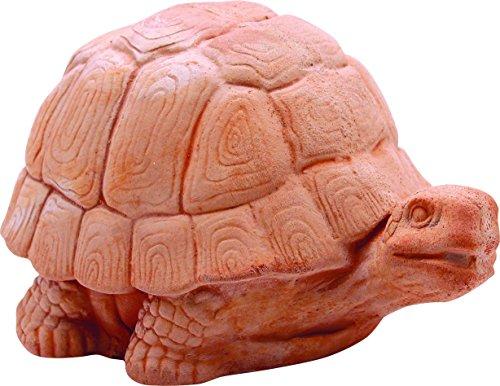 Tortue Grasse Galestro cm.21