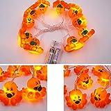 LED Lichterkette, 1.8M 10LEDs Cute Animal String Licht für Home Party Weihnachtsdekoration Nacht Lampe Oktopus