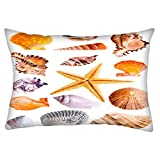Snoogg 14 Mussels And Star Fish Studio Isolated On White Rectangle Toss Throw Pillow Cushion Cover Decoarative Pillow Case 12 x 20