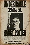 HARRY POTTER Poster, Bois Dense, Undesirable No 1, 61 x 91,5 cm