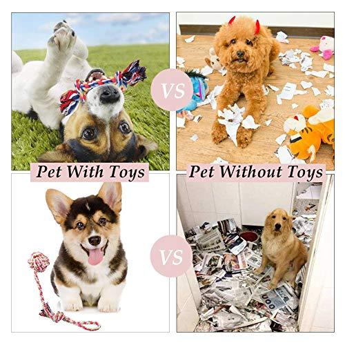 Habier Hundespielzeug, 6 Stück Kauspielzeug Hund Spielzeug Set Baumwollknoten Spielset Seil Interaktives Spielzeug für Kleine und Mittlere Hunde - 6