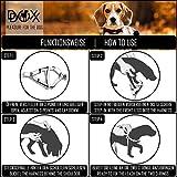 Hundegeschirr Step-In aus Premium-Nylon verschiedene Farben und Groessen XXS, XS, S, M, L, XL: Brustgeschirr, Laufgeschirr, Fuehrgeschirr, verstellbar, Zugentlastung, stabil, bequem, weich, farbig, fuer große und kleine Hund (Leine und Halsband separat erhaeltlich) (Farbe Schwarz, Größe XS – 1,0 x 32-44 cm) - 6