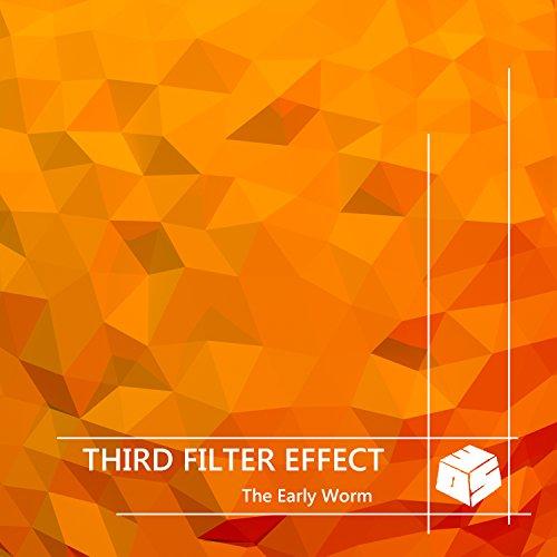 Filter Wrap (Filter Wraps)
