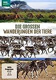 DVDViele Tierarten unternehmen jedes Jahr weite Streifzüge, meist im Rhythmus der Jahreszeiten oder im Takt wechselnder Trockenphasen und Regenperioden. Diese dreiteilige Serie folgt den Fährten von Elefanten, Karibus und Zebras. Sie enthüllt, was di...