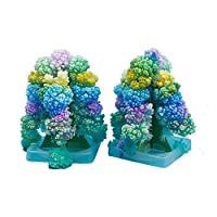 Whiie891203 DIY Toy Blooming Christmas Paper Tree Magic Growing Experiment Kids Toy Table Decor for Kids and Adults, Birthday & Christmas Gift