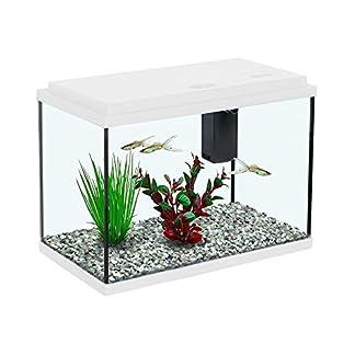 All Pond Solutions – Aquatlantis Funny Fish 35 Aquarium Fish Tank – 13 Litres – White 51Wl8L5Q64L