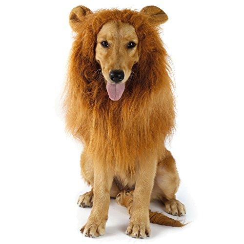 Gewinnen Preis Kostüme Hund (Hund Löwe Mähne, Haustier Löwenmähne für Hunde, Hundekostüm, Hunde Perücke mit Ohren für Mittlere und Große Hunde, Dog Lion Mane für Festival Party Halloween)